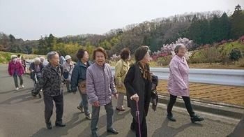 桃源郷歩く7.JPG
