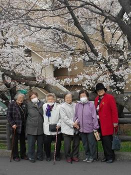 桜記念2.JPG